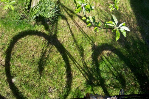 shadow of Pedersen bicycle on grass