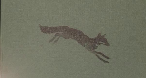 Foxy Morris